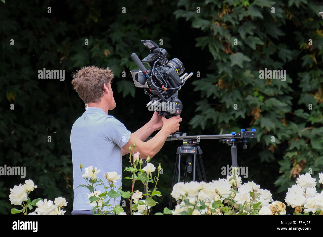 Cameraman filming in garden area with professional video equipment - Stock Image