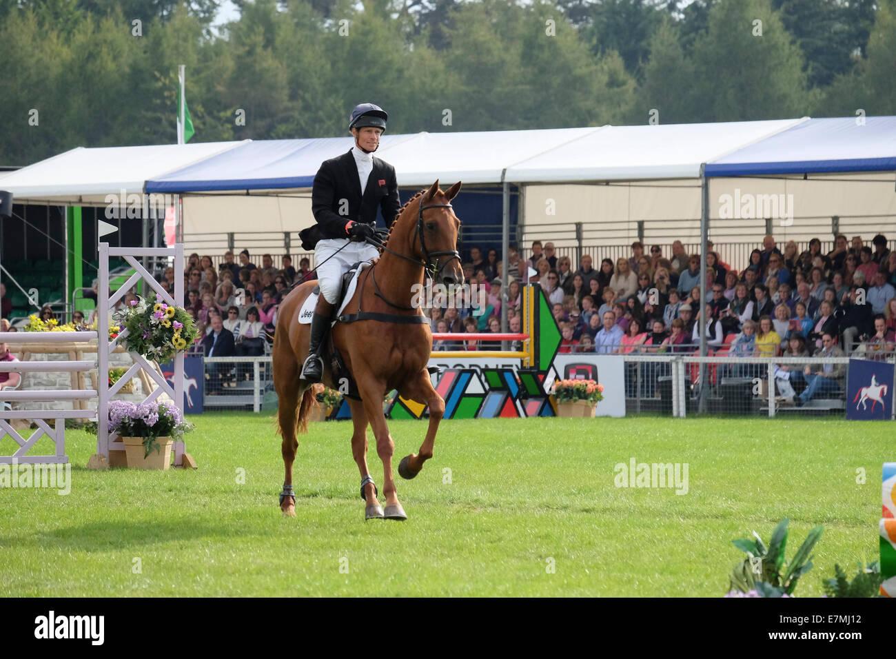 William Fox Pitt, Eventing, Blenheim, Palace 2014 - Stock Image