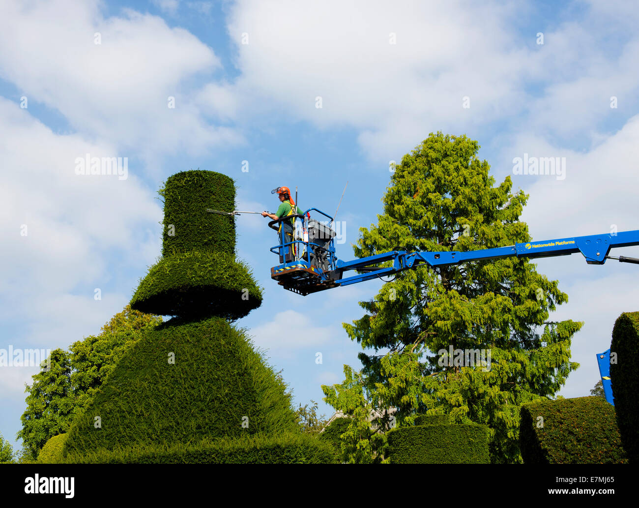 Man trimming topiary from cherry-picker, Levens Hall, South Lakeland, Cumbria, England UK - Stock Image