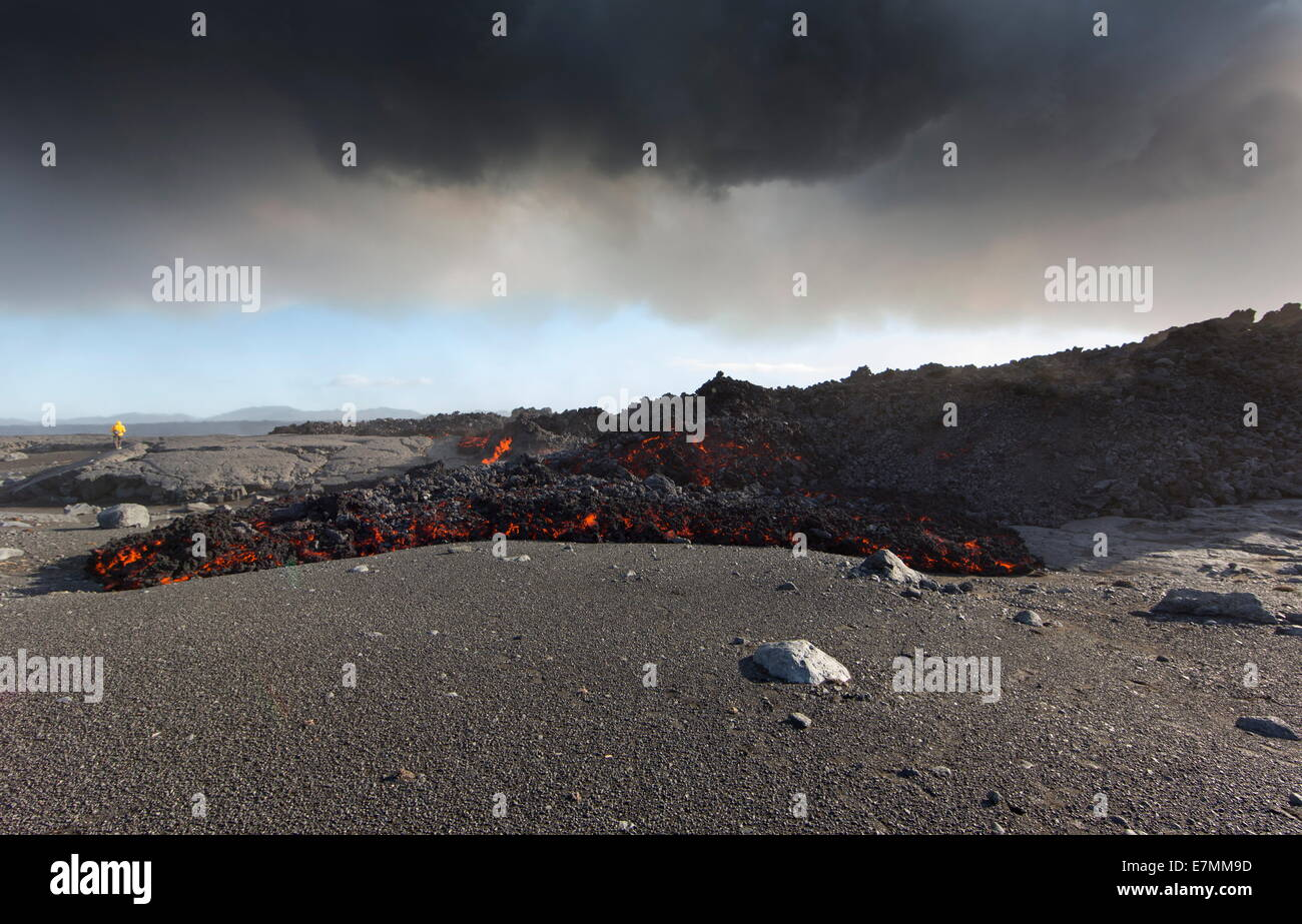 Volcano eruption, Holuhraun, north east Iceland, new and extremely hot lava - Stock Image