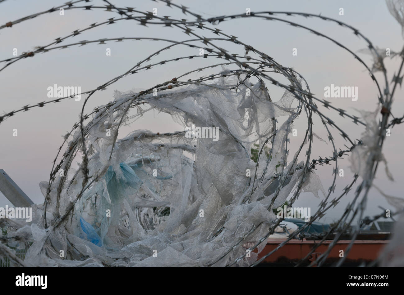 Galvanised high security razor wire and barbed wires deterrent to ...