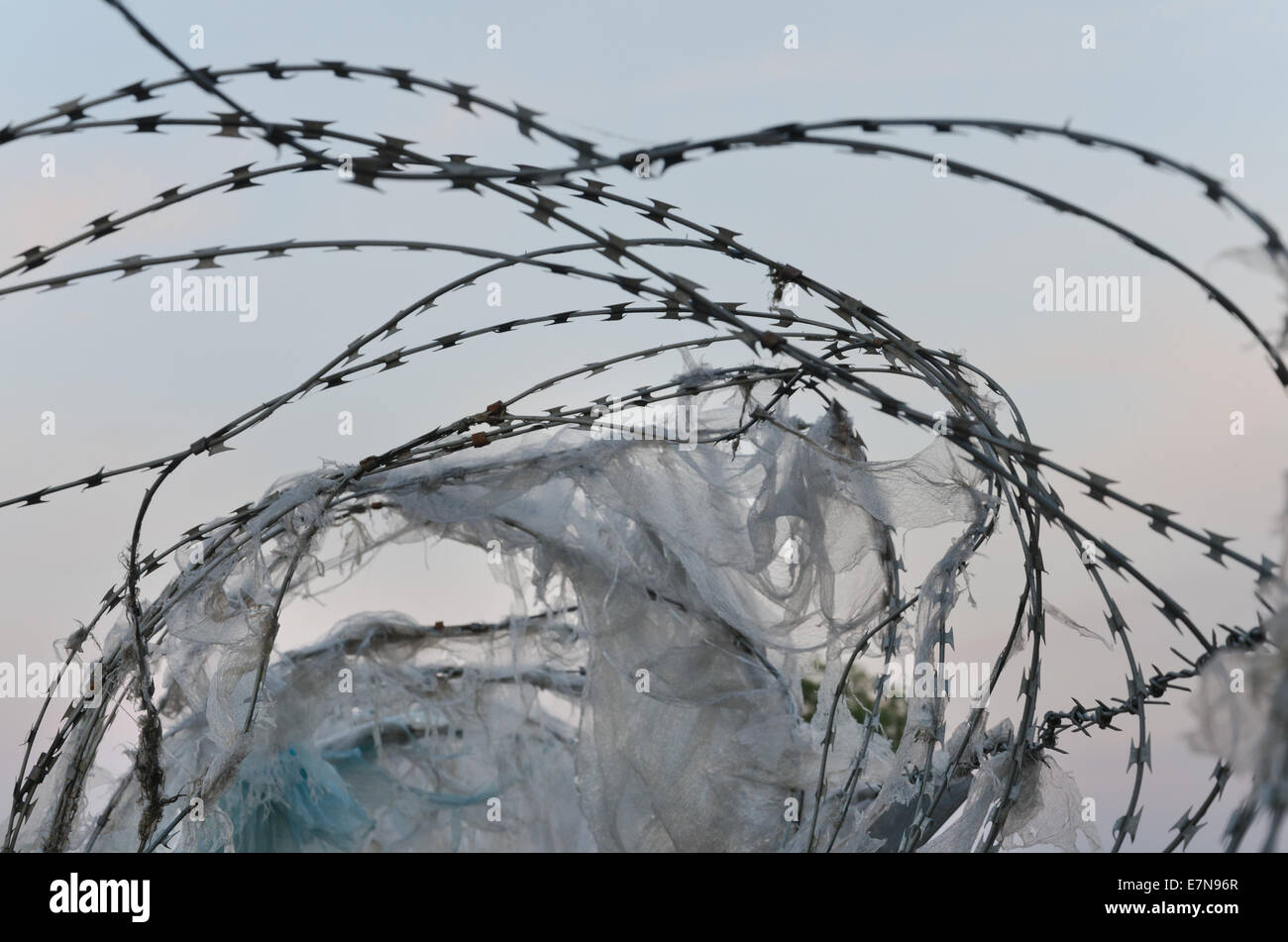 Razor Wire Cut Out Stock Photos & Razor Wire Cut Out Stock Images ...