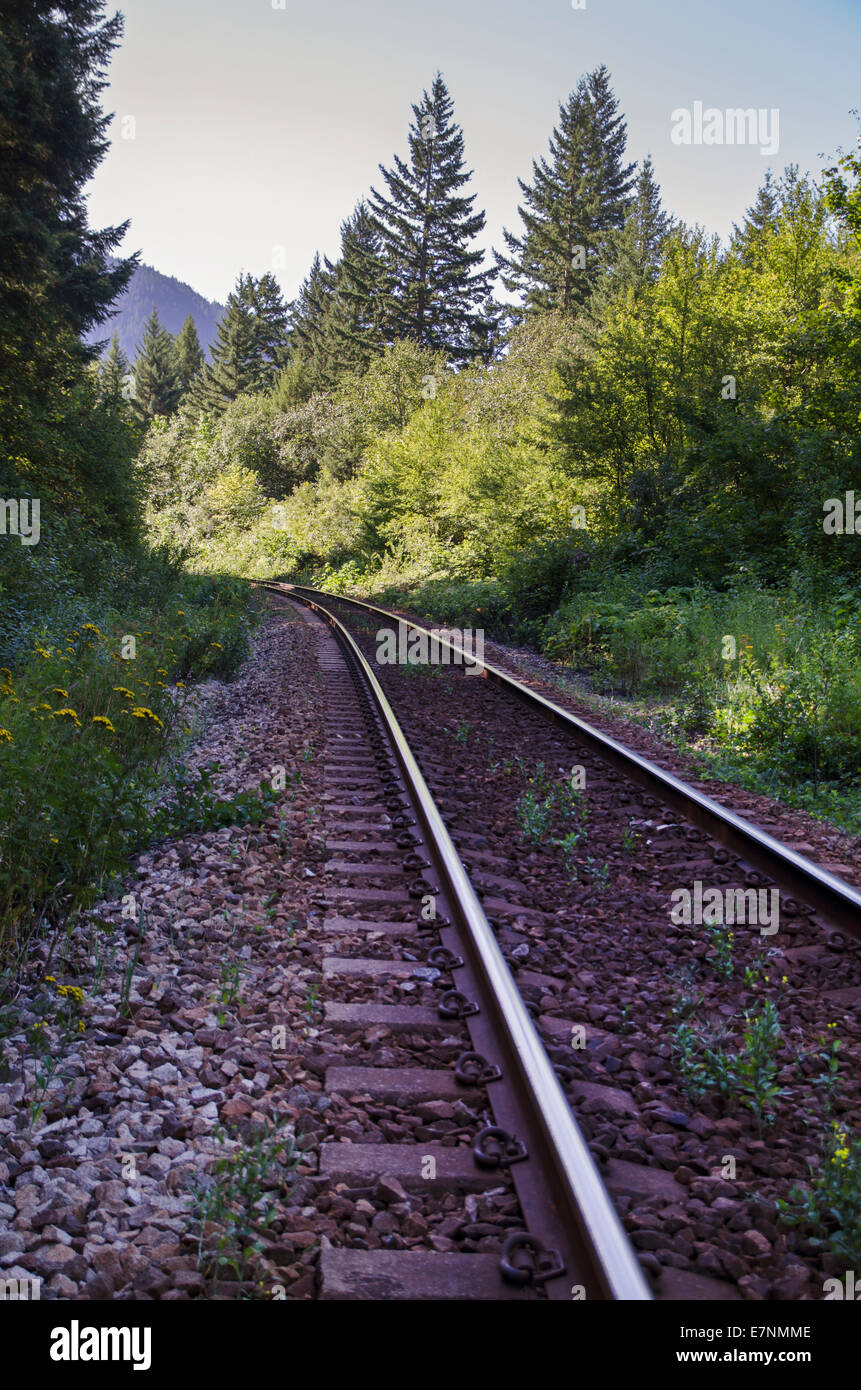 Railway tracks in the Canadian Rockies - Stock Image