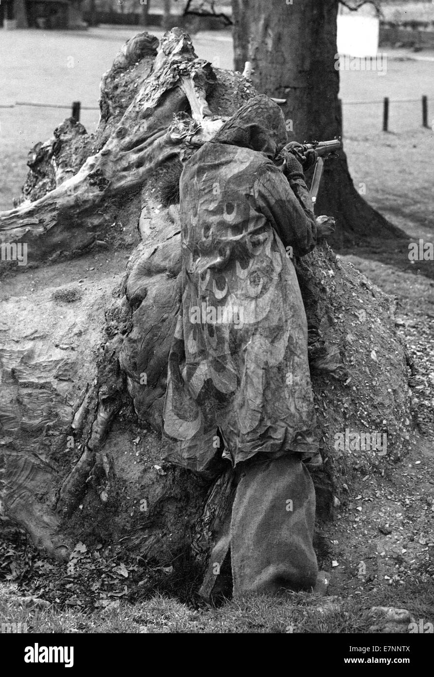 British army sniper of WW11 in full camouflage - Stock Image