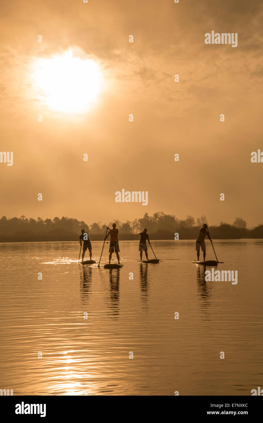 Seegräben, paddling, Pfäffikersee, Stand Up Paddling, lake, lakes, water sport, sport, canton Zurich, - Stock Image