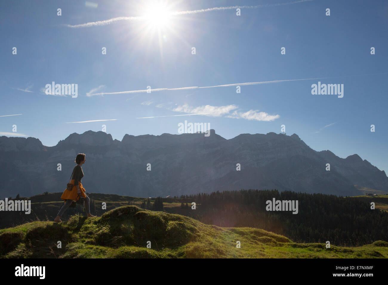 Alpstein, barefooted, walking, Kronberg, mountain, mountains, canton, Appenzell, Innerroden, Alpstein, Säntis, - Stock Image