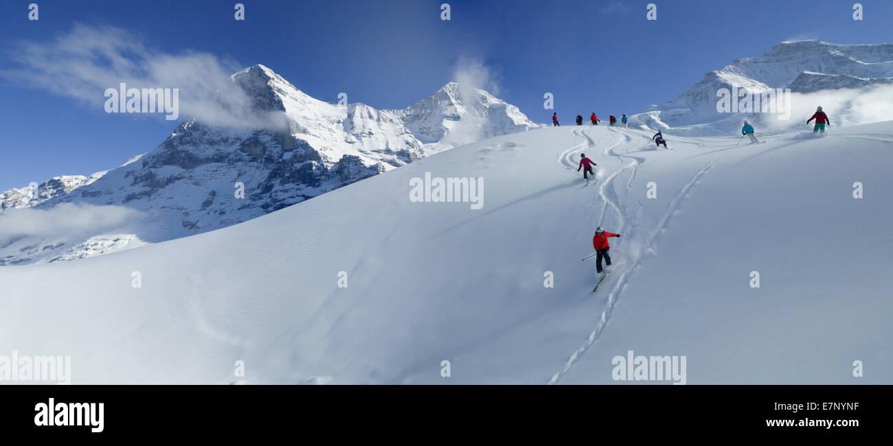 Ski, skiing, Kleine Scheidegg, Eiger, monk, Mönch, Jungfrau, mountain, mountains, ski, skiing, Carving, winter, - Stock Image