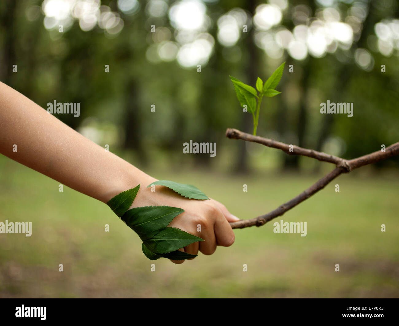 Environment concept. Handshake between human hand and tree. - Stock Image