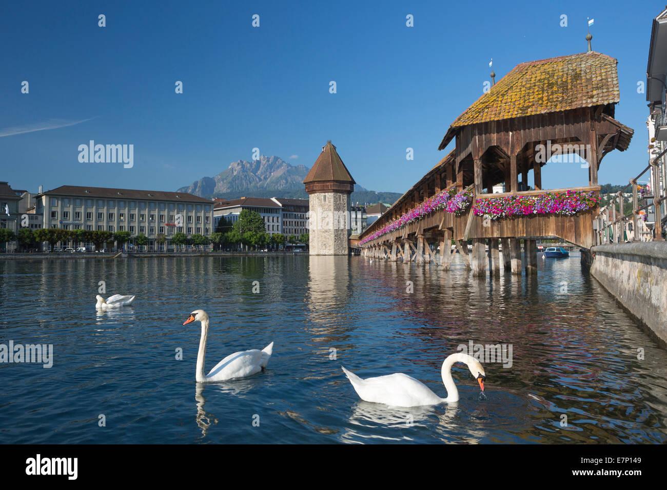 world heritage, Lucerne, Switzerland, Europe, architecture, bridge, chapel, city, famous, lake, cityscape, Pilatus, - Stock Image