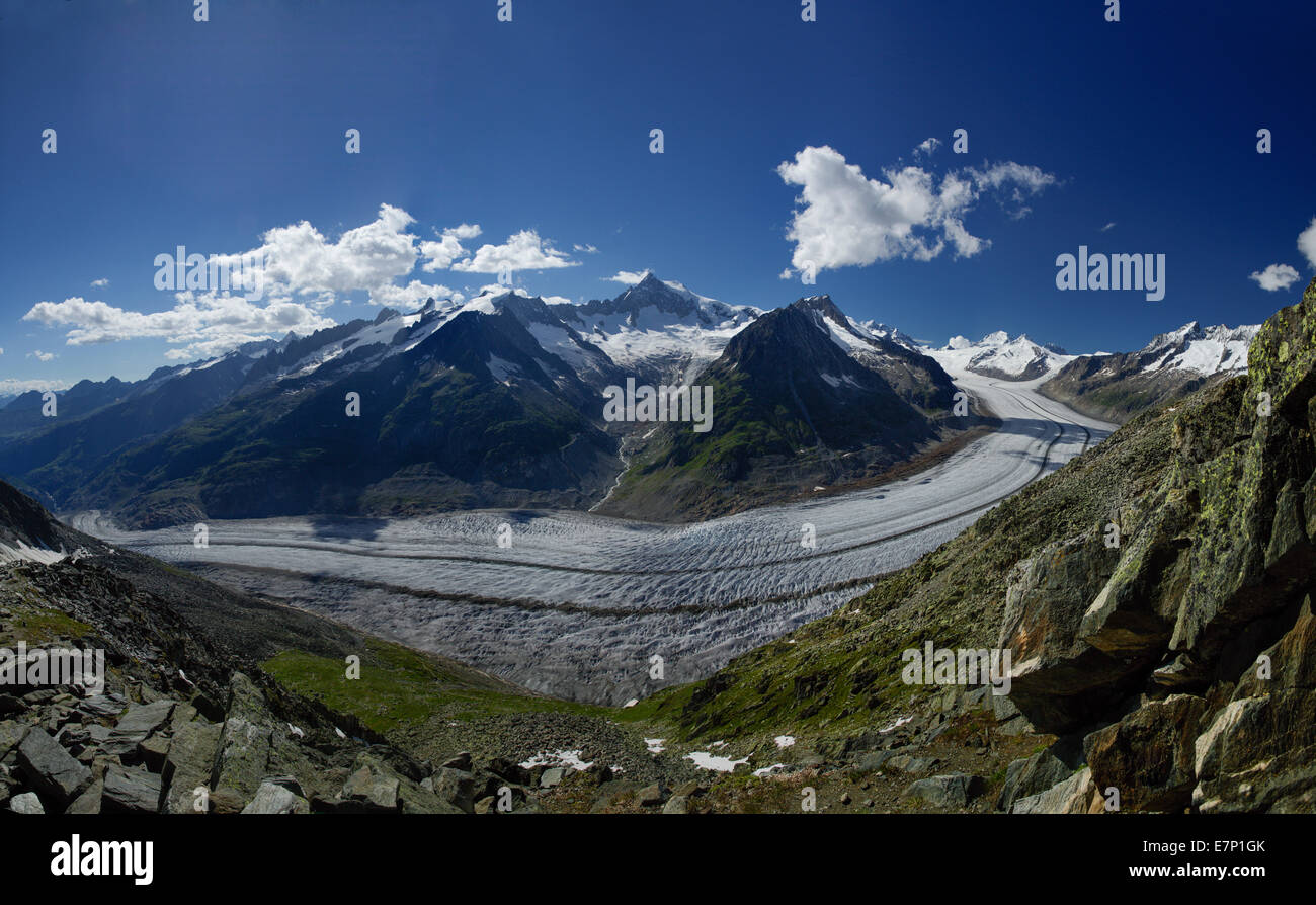 Eggishorn, Aletsch glacier, mountain, mountains, canton, VS, Valais, glacier, ice, moraine, Switzerland, Europe, - Stock Image