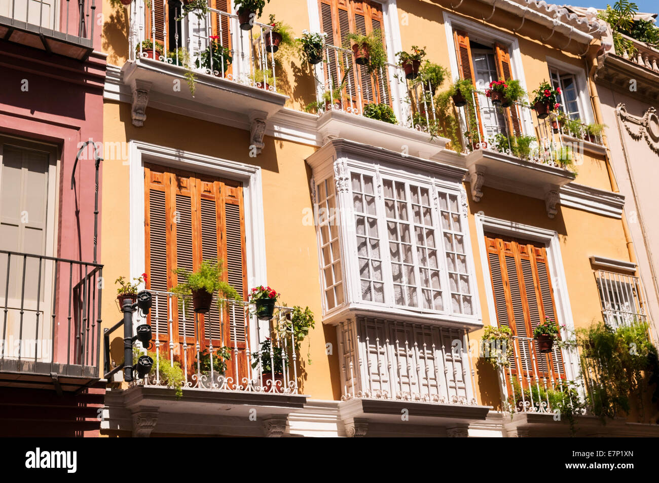 Windows and balconies Malaga Andalusia Spain - Stock Image