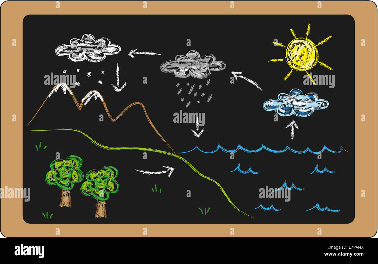 Water Cycle Diagram Stock Photos Images To Make Flow Chart Drawing Illustration Of On Blackboard Image