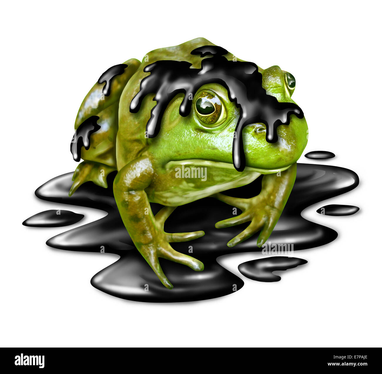 Polluted fauna and oil disaster victim concept as a dirty green frog with black crude petroleum liquid dripping - Stock Image