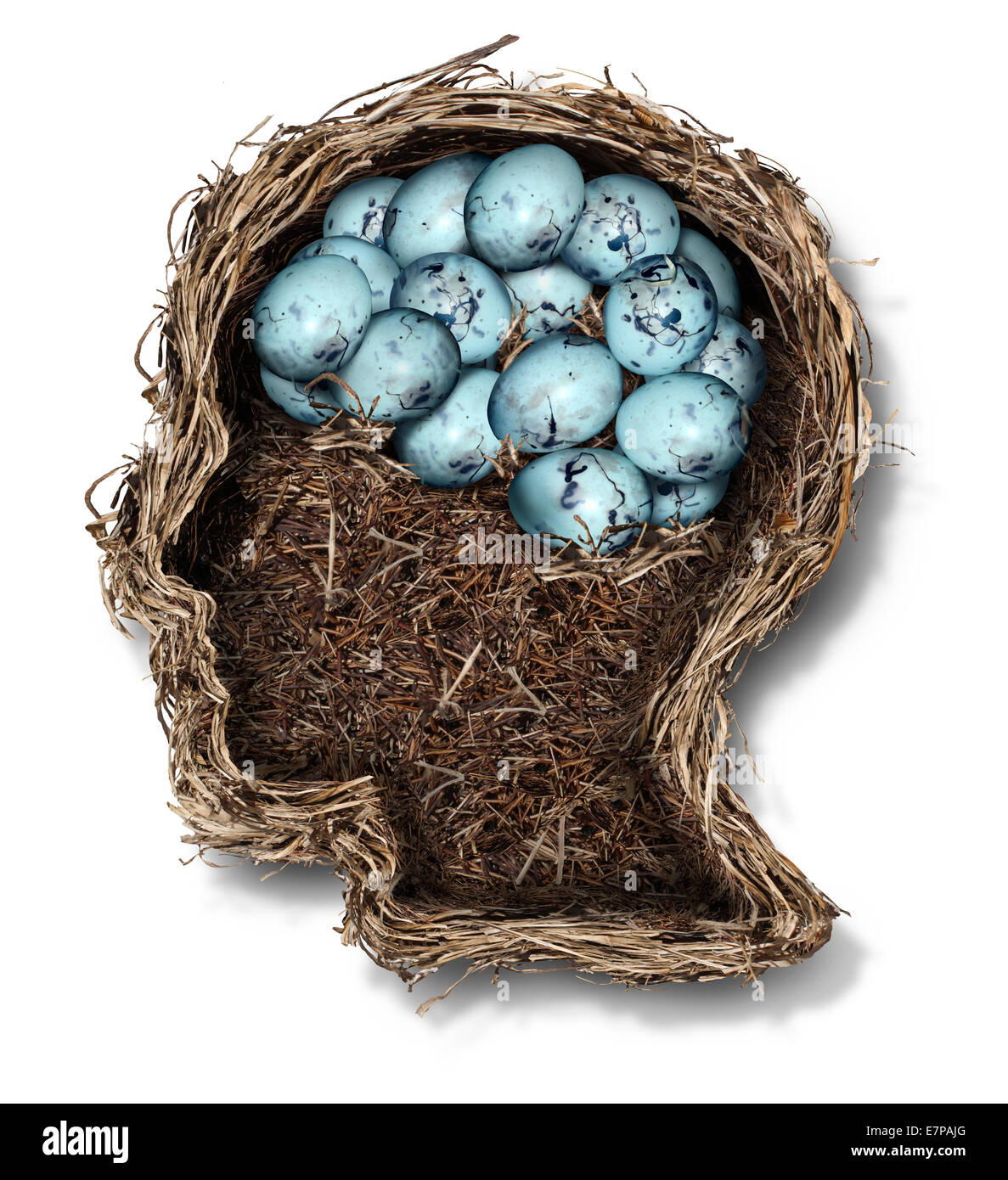 Protecting the brain mental health concept as a bird nest shaped as a human head and face with a group of eggs in - Stock Image