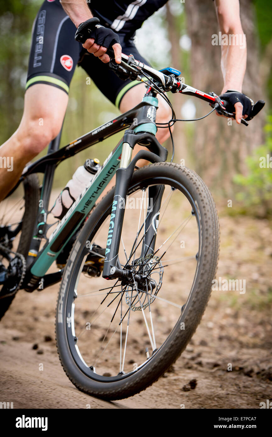 Closeup from a mountainbiker in the woods, details of the front part of the bike with his hands - Stock Image