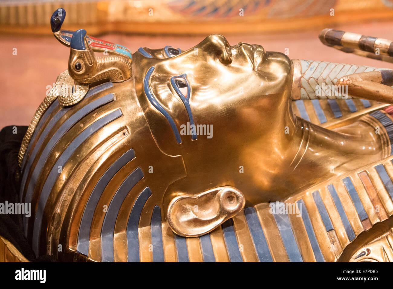 King tut head shot laying down - Stock Image