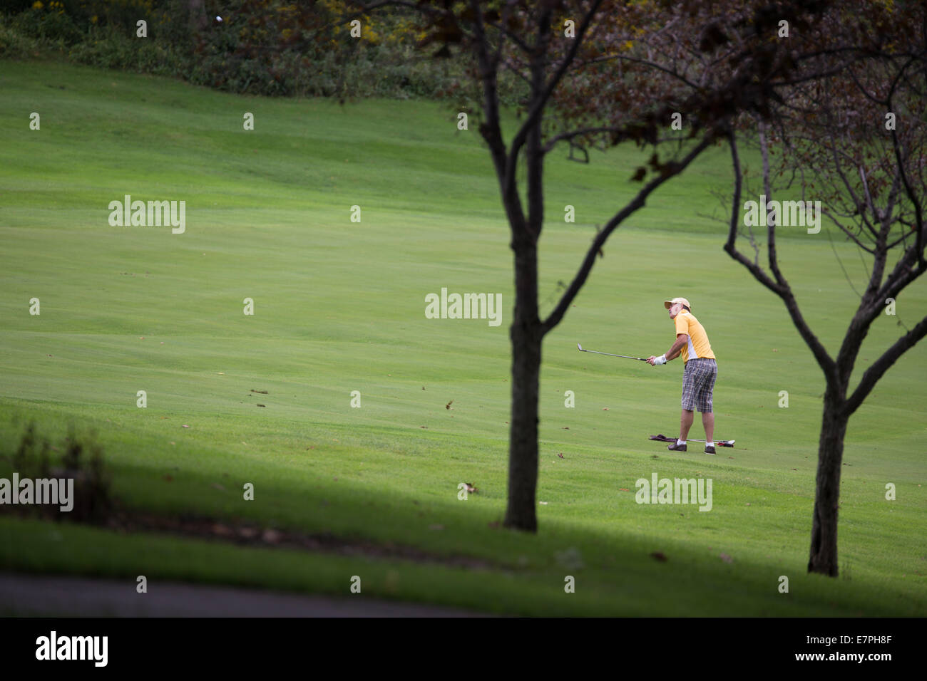 man golfing golf course - Stock Image