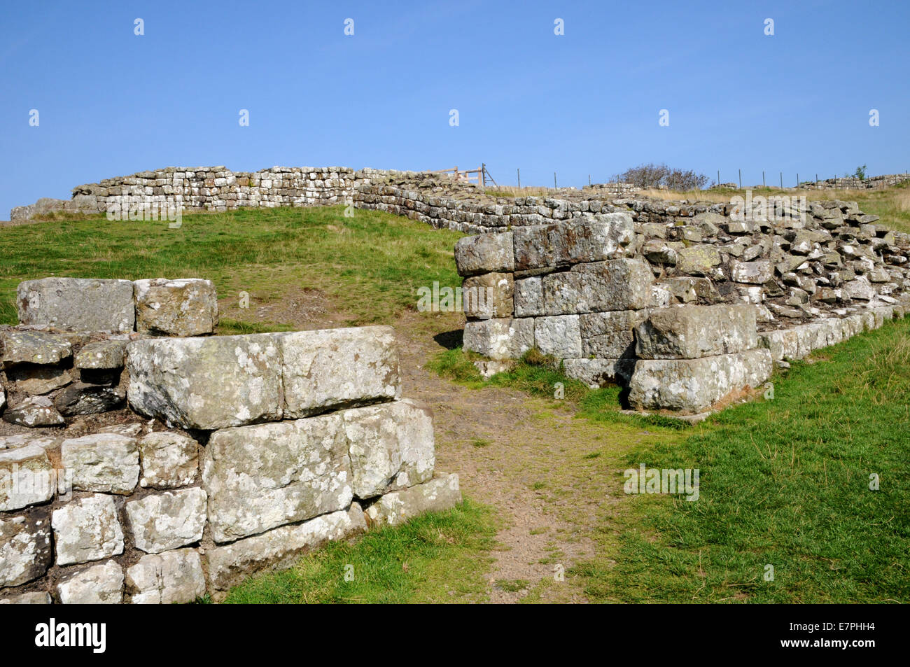 Hadrian's Wall and Milecastle number 42 at Cawfields. - Stock Image
