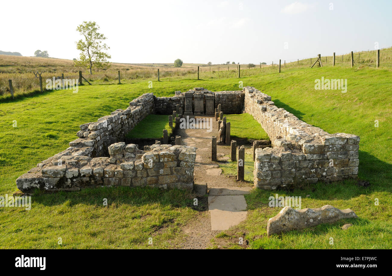 Overview of the Mithraeum near Hadrian's Wall. The temple was dedicated to the god Mithras and was popular with - Stock Image