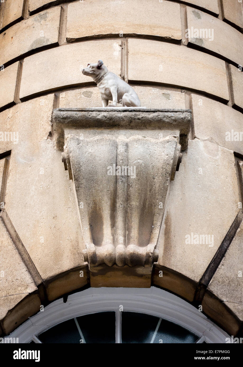 Nipper the Jack Russell of His Master's Voice fame commemorated in a stone sculpture on a Bristol University - Stock Image
