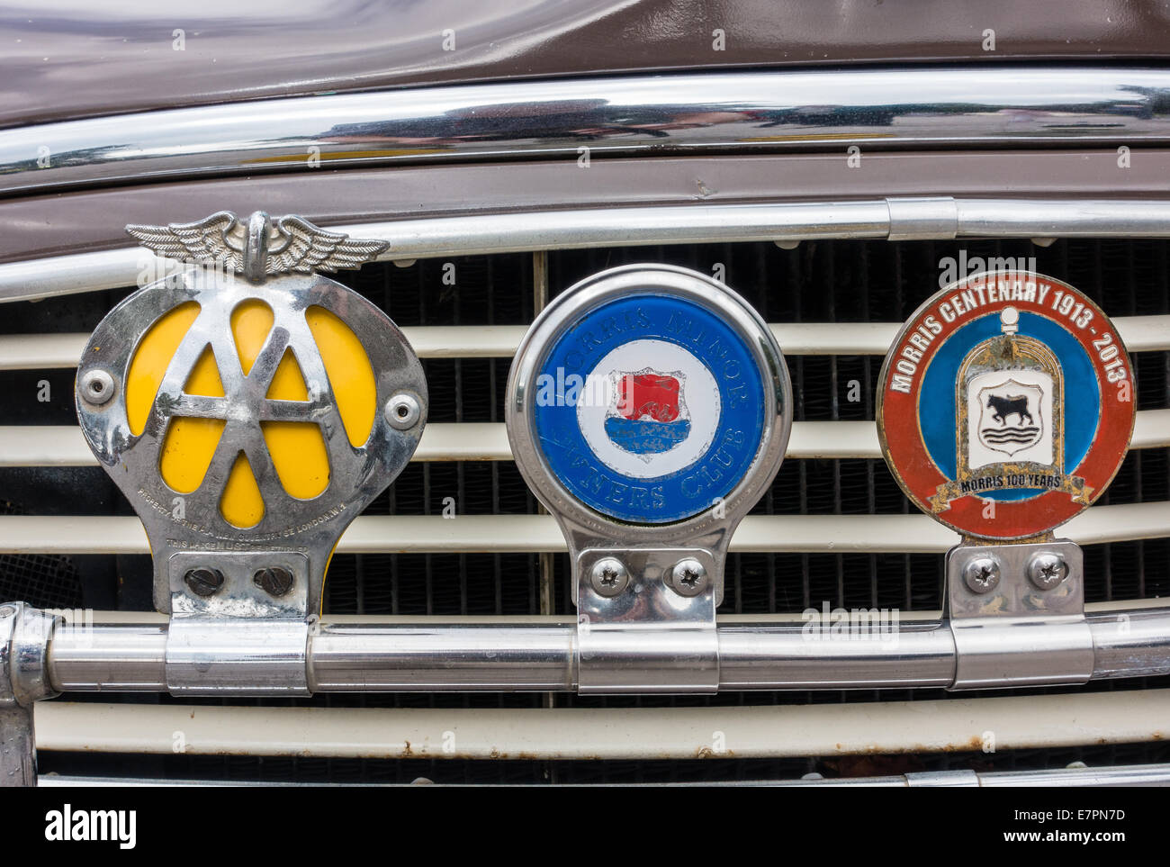 Badge bar on a vintage car with Automobile Association Morris Owners Club and Morris Centenary Badge - Stock Image