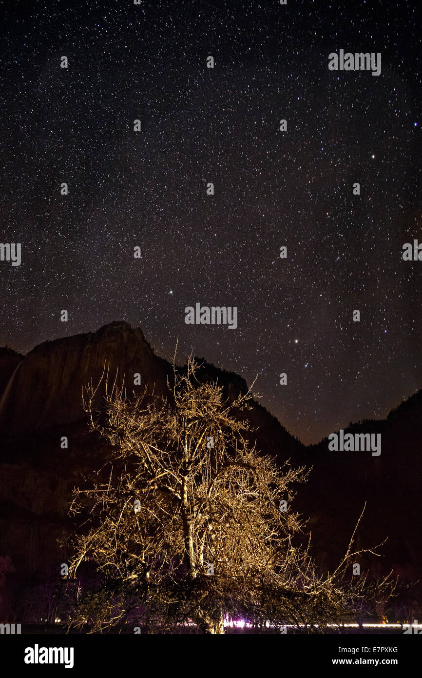 CA02280-00...CALIFORNIA - Stars shine over Yosemite Valley in Yosemite National Park. - Stock Image