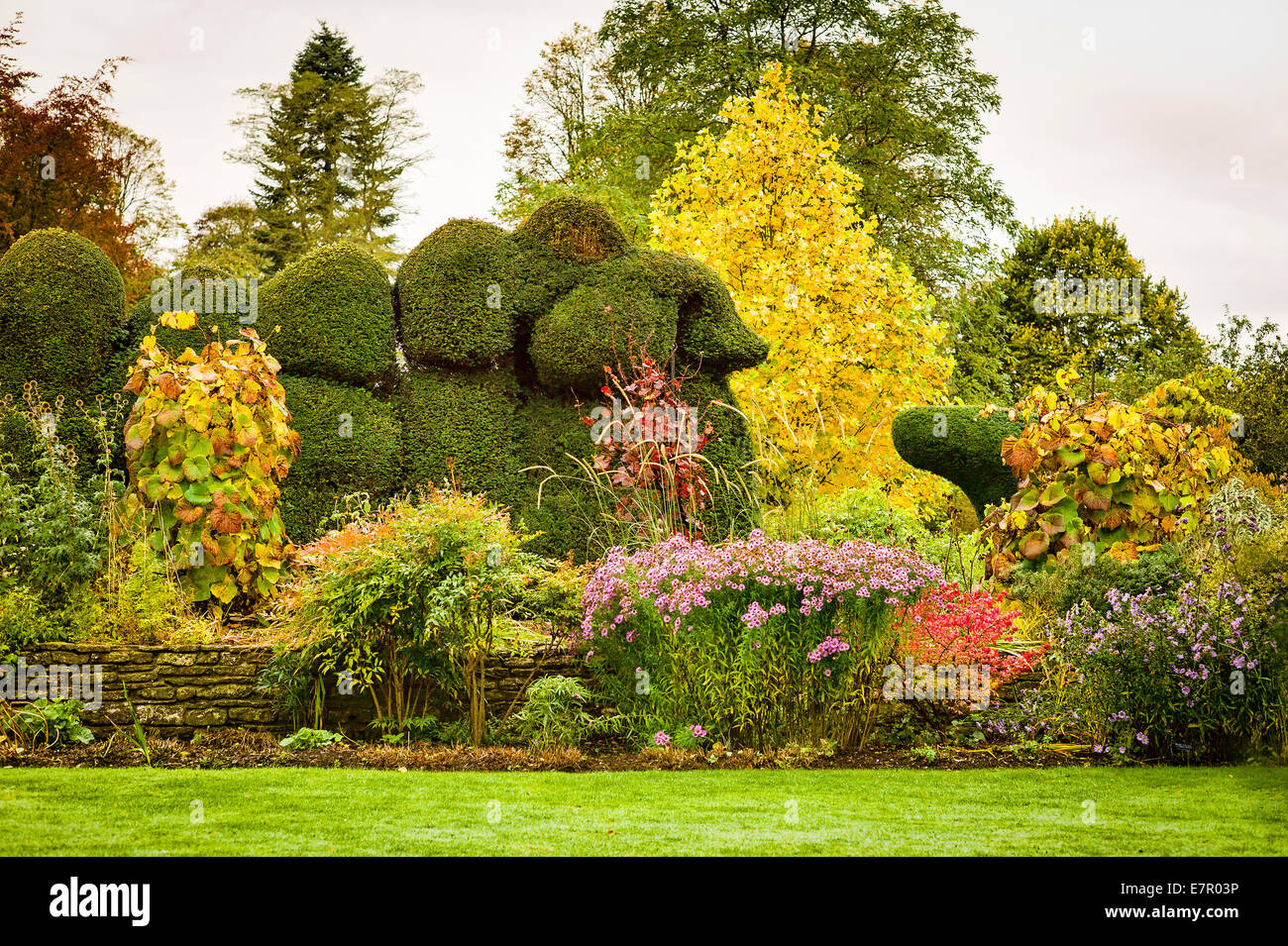 Colour and shapes in The Courts garden in the autumn - Stock Image