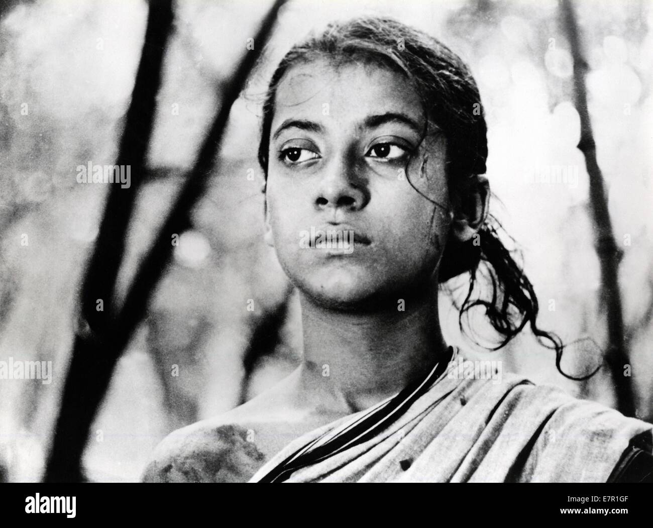 pather panchali song of the road year 1955 india director stock