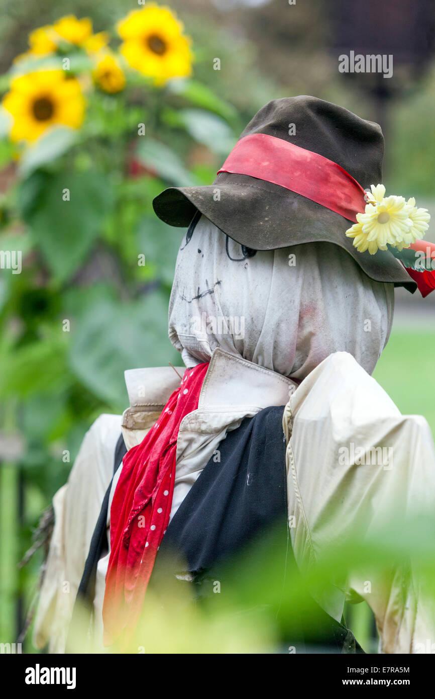 scarecrow scaring birds in the garden, Czech Republic - Stock Image