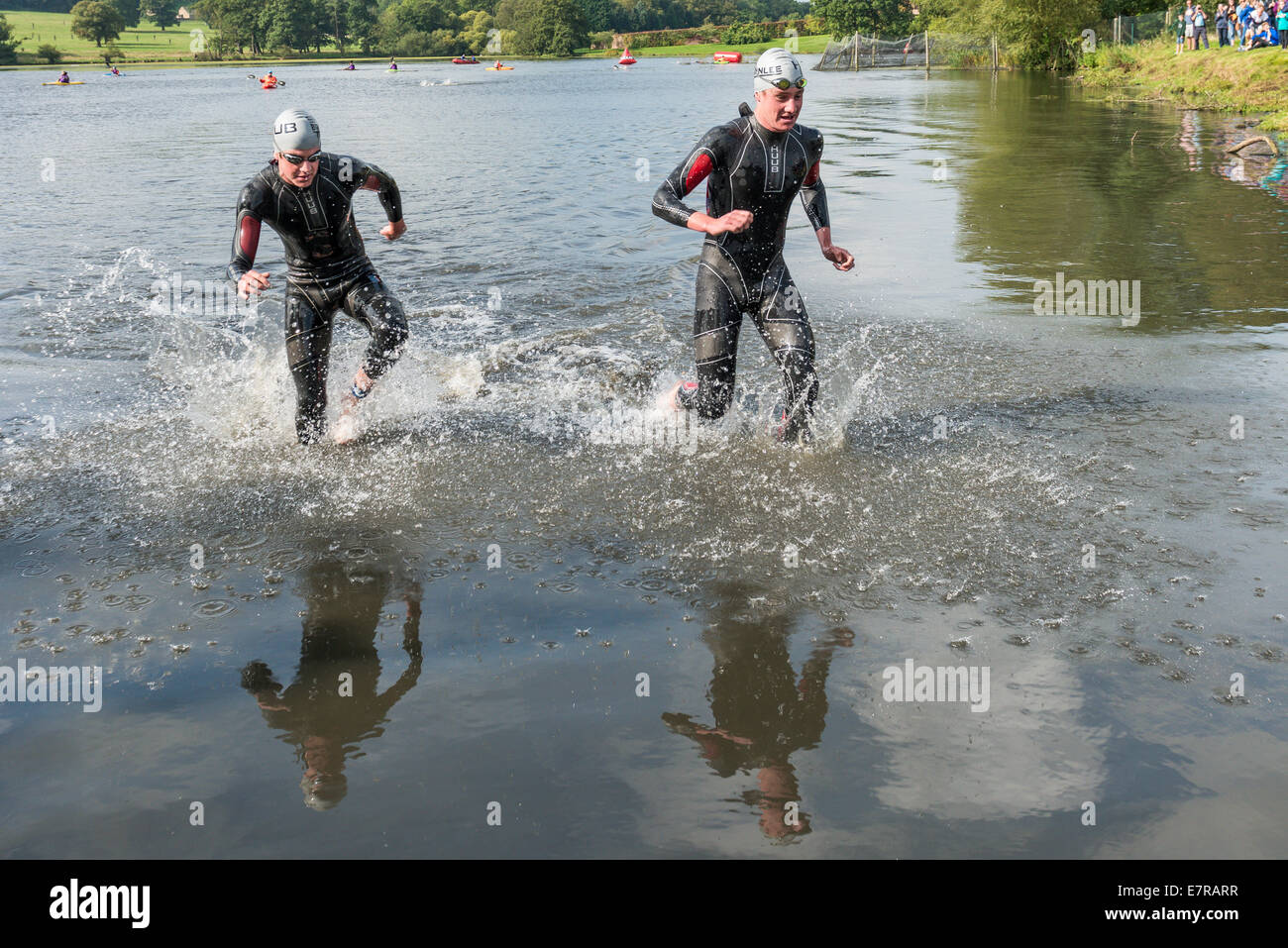 Brownlee Brothers at the Brownlee Tri North event at Harewood house coming out of the swim as swim stage - Stock Image
