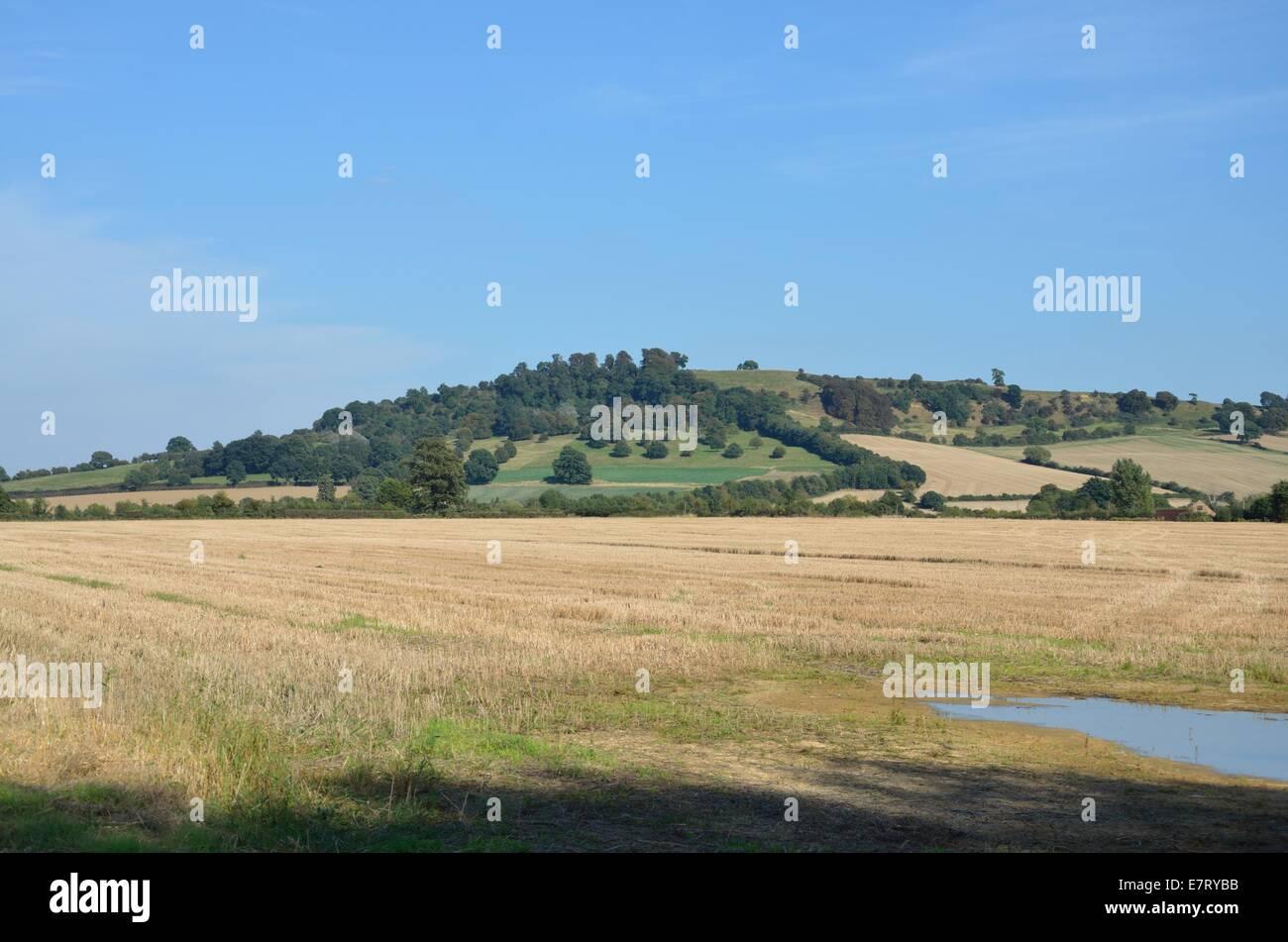 Meon Hill, Warwickshire - Stock Image