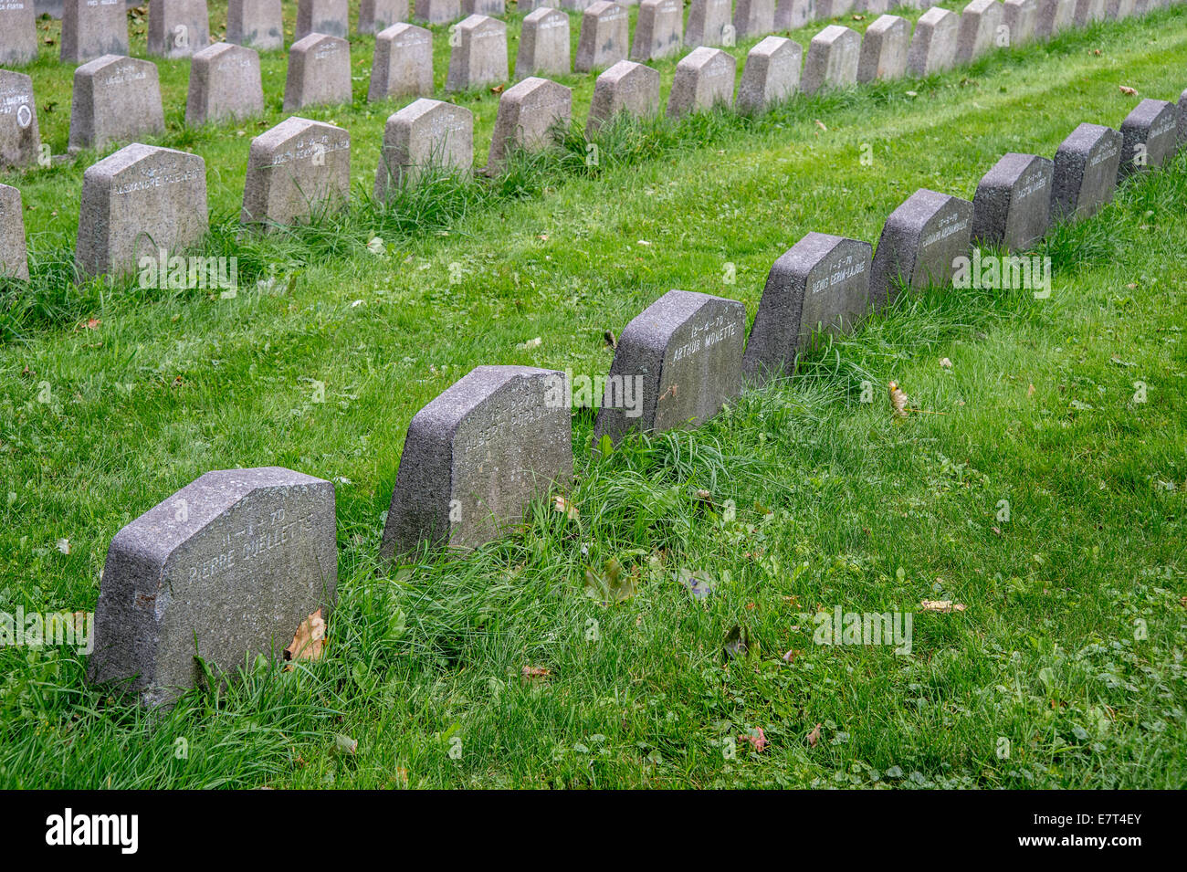 Rows of tombstones in a canadian cemetary - Stock Image