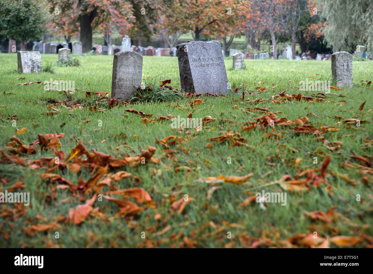 Tombstones on a graveyard in Fall - Stock Image