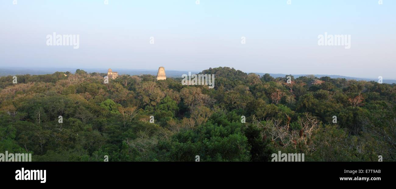 The remains of ancient Mayan temples rise above the jungle canopy in Tikal National Park, Guatemala. - Stock Image