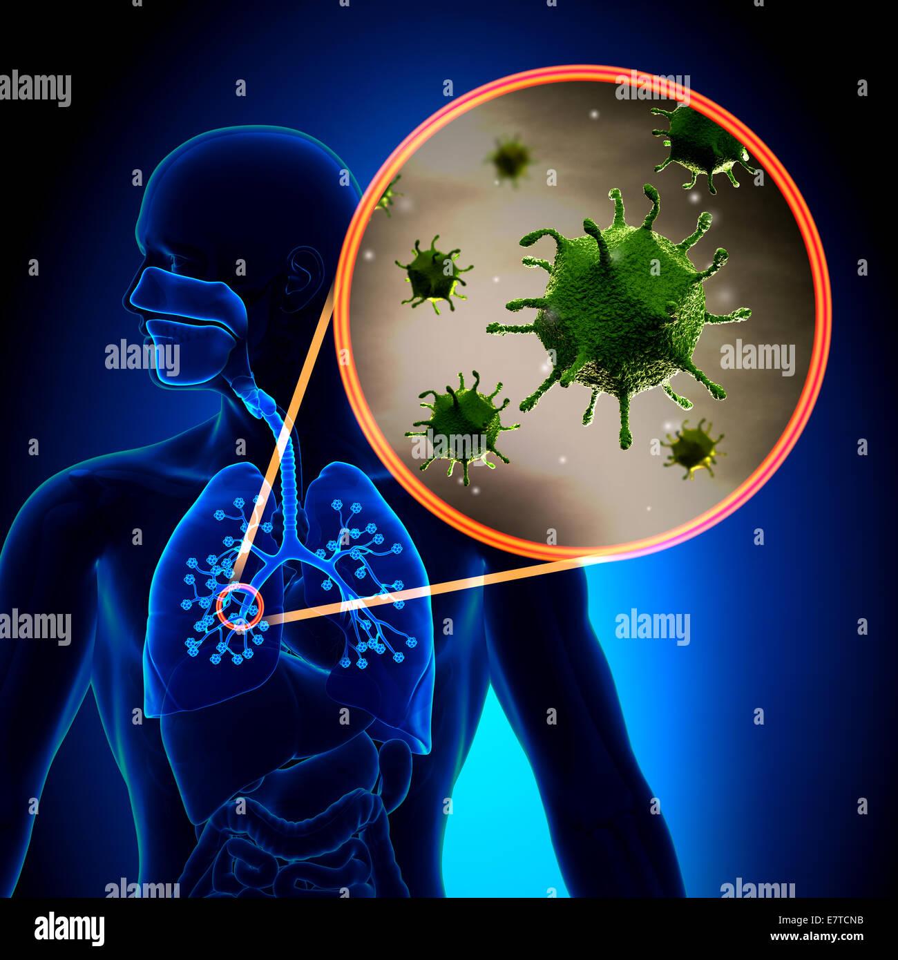 Flu / Cold Virus - Stock Image