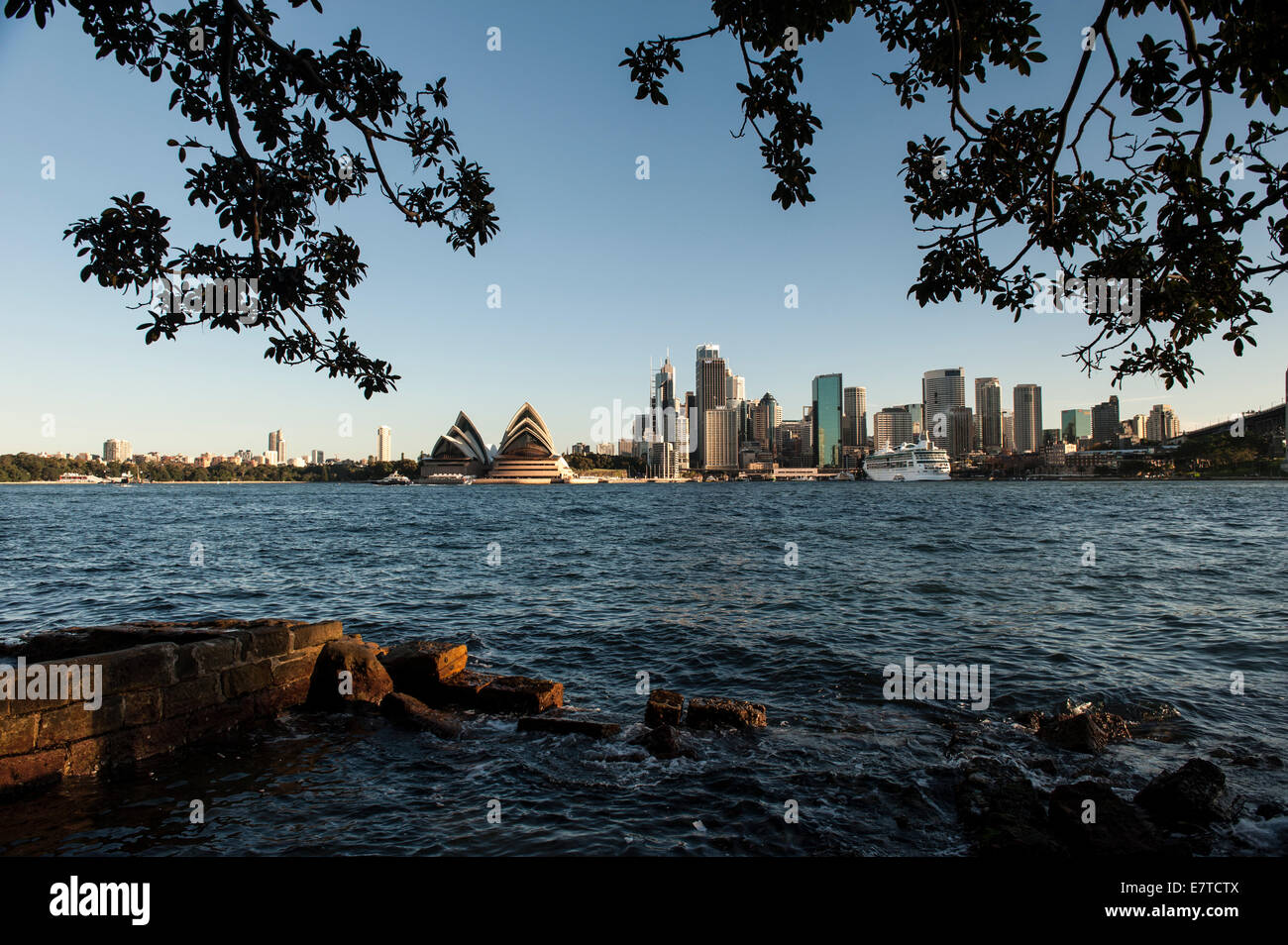 Sydney Harbour Cityscape with Opera House & trees framing the Stock ...