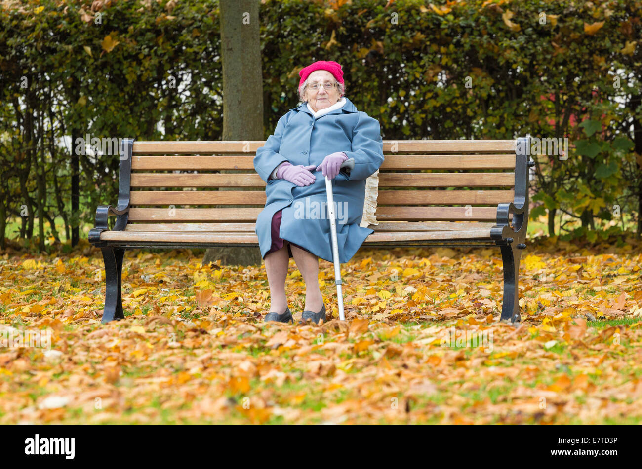Image result for images of sitting on a park bench in autumn