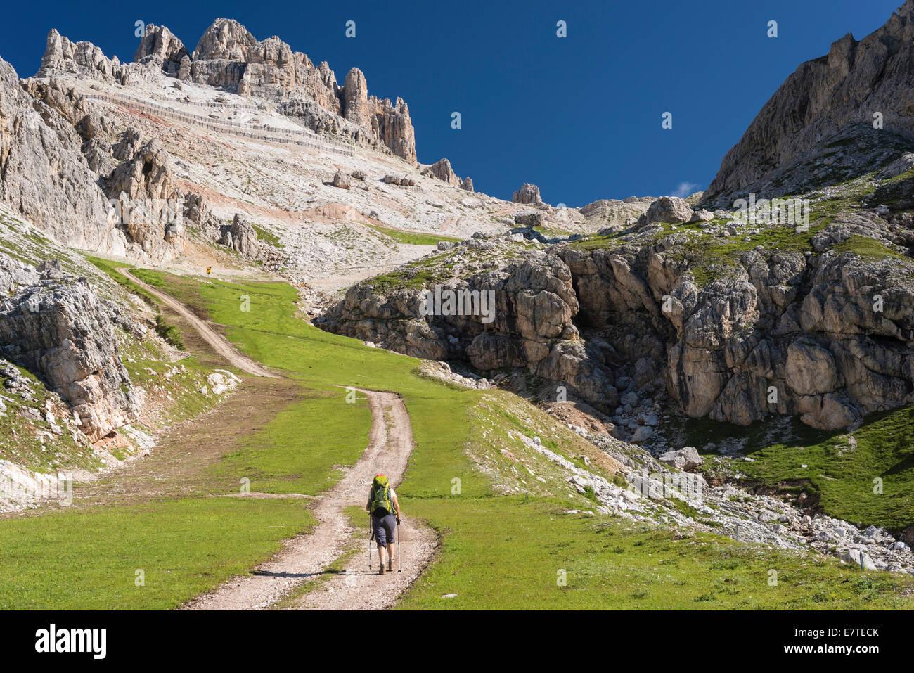 Ascent from Falzarego Pass to the Lagazuoi, long distance hiking trail Italy, Sentiero Italia SI No. 402, Cortina - Stock Image