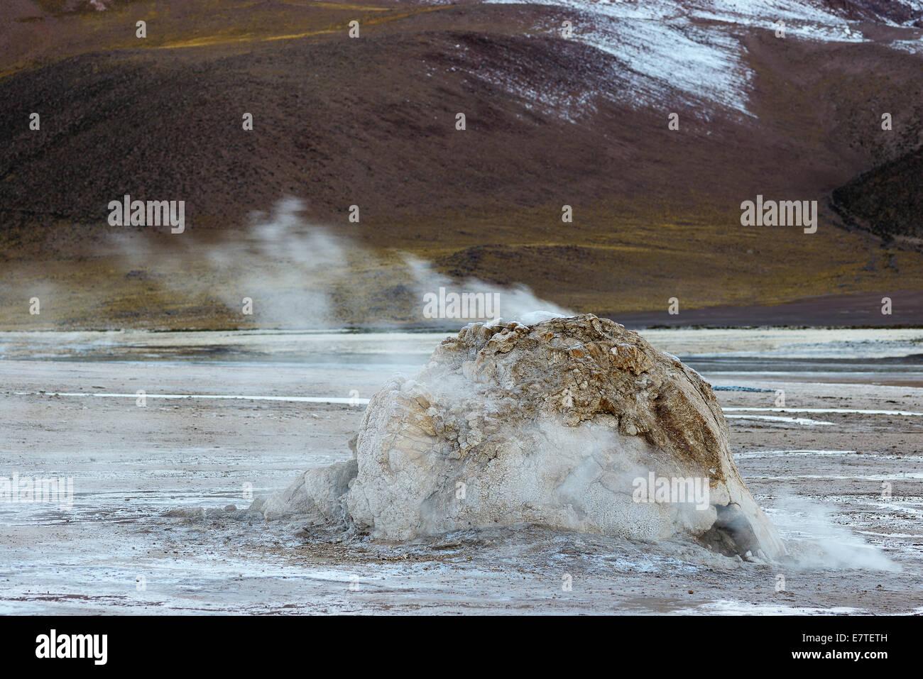 Geyser, geyserite vent releasing steam, El Tatio, the highest geyser field in the world, Antofagasta, on the edge - Stock Image