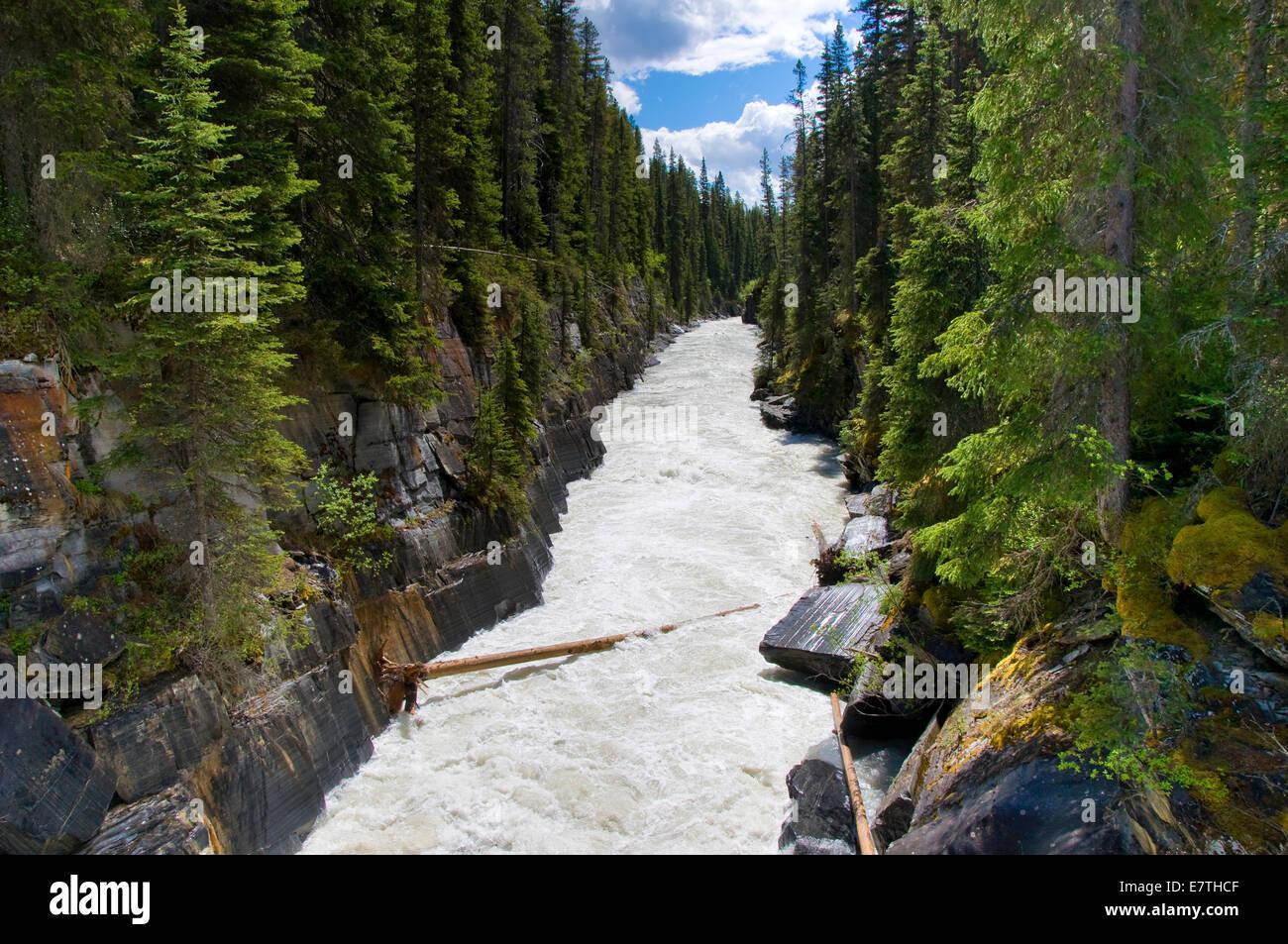 Numa Falls, Kootenay National Park, British Columbia, Canada - Stock Image
