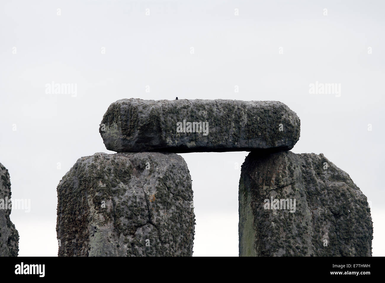 Stonehenge - Lintel on inner circle standing stones - Stock Image