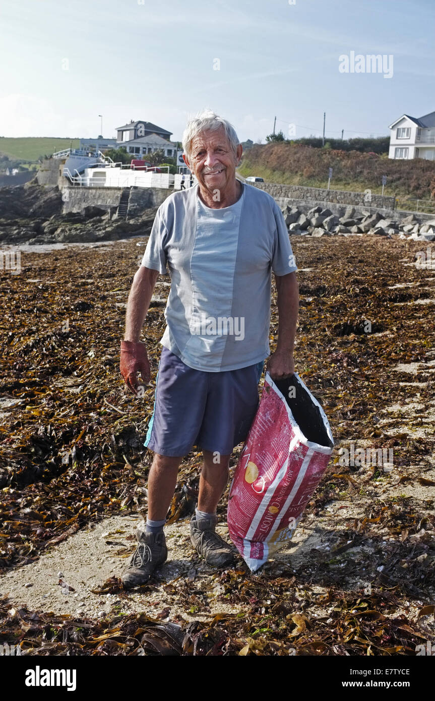 A man collecting seaweed to use as a manure and soil improver in his garden - Stock Image