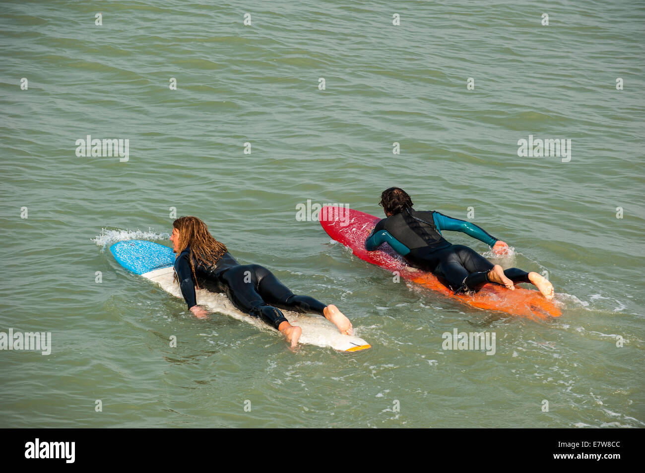 Two surfers in wetsuits laying flat on their surfboards in the sea, paddling out towards the waves - Stock Image
