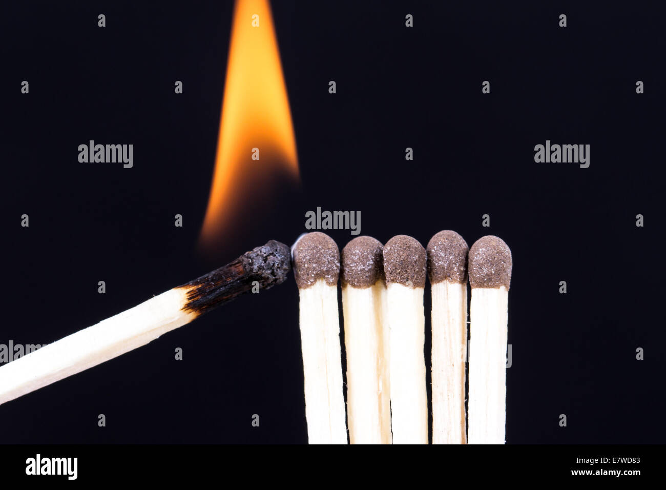 Ideas and inspiration concept, burning match with flame setting fire to others on dark background. - Stock Image