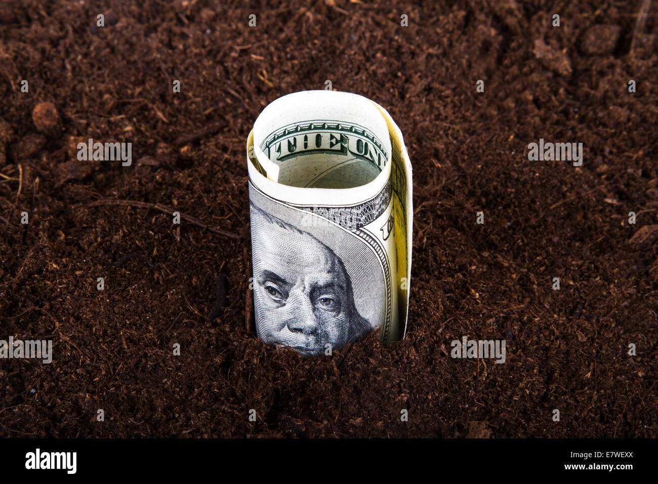 One hundred dollar bill money growing in soil. - Stock Image
