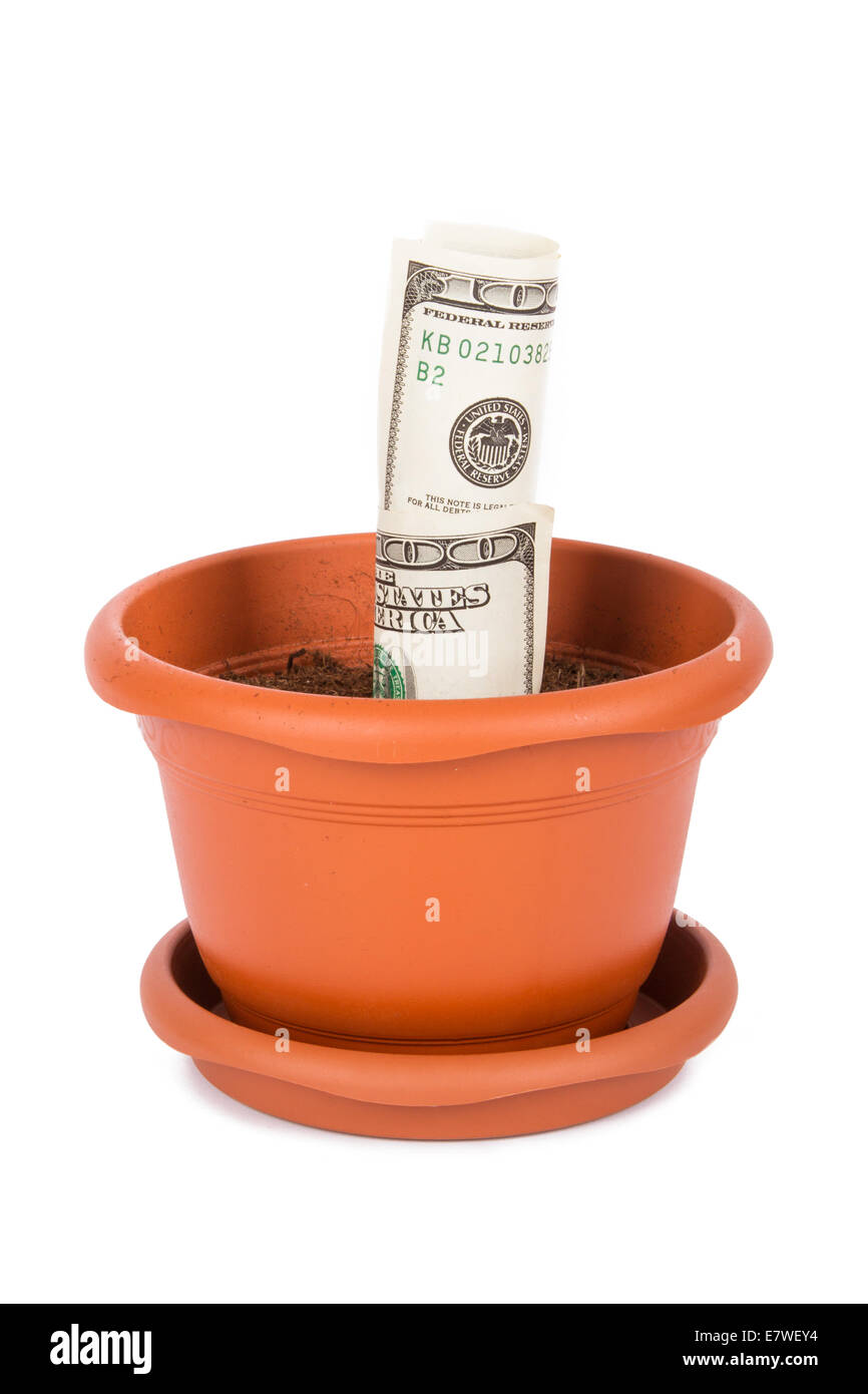 Flower pot and full of soil with one hundred dollar bills inside, isolated on white background. - Stock Image