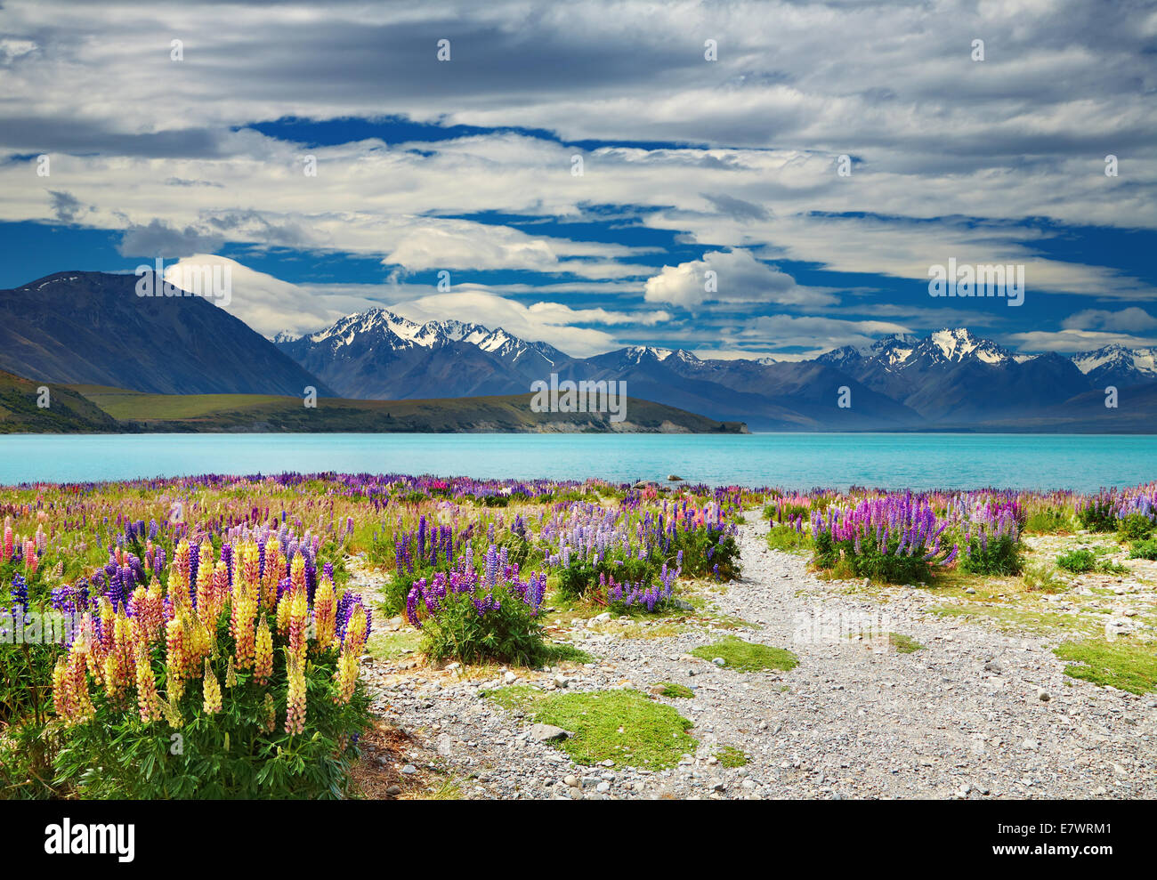 Lake Tekapo, Southern Alps, New Zealand - Stock Image