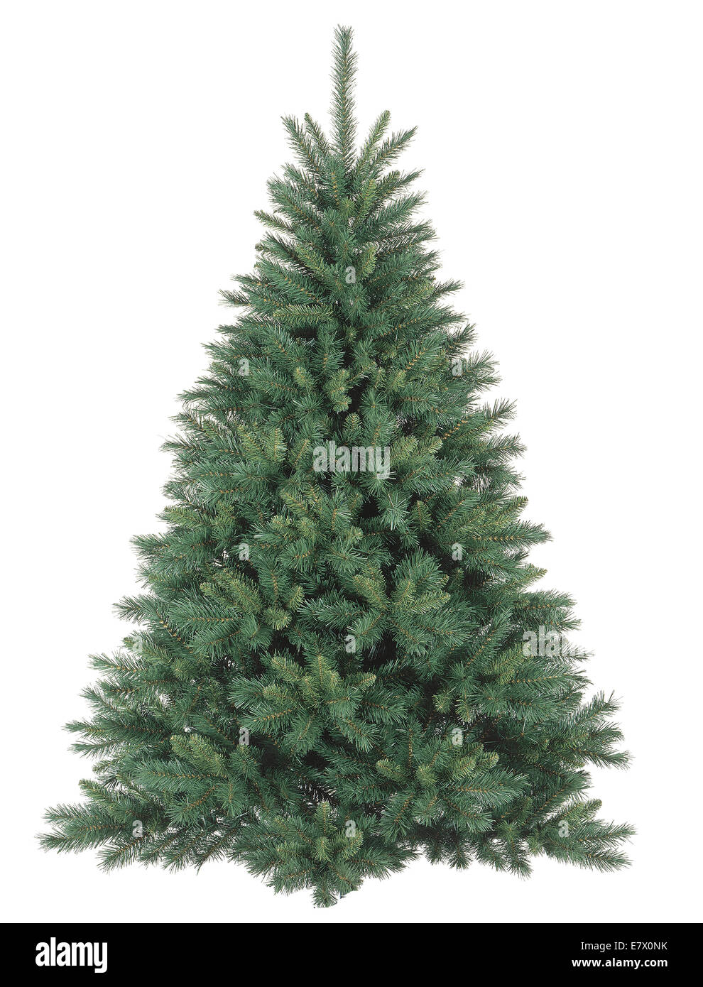 Christmas tree without ornaments - Stock Image