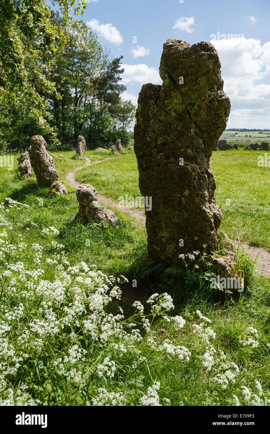 Rollright Stones, near Long Compton, Oxfordshire - Stock Image
