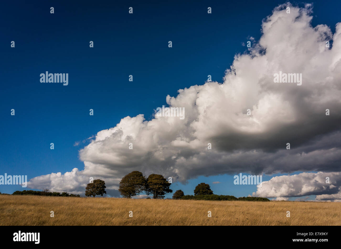 Dramatic cloud-scape over Cissbury Rings, Worthing, West Sussex, UK - Stock Image